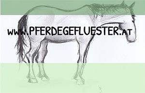Pferdegeflüster Pinzgau
